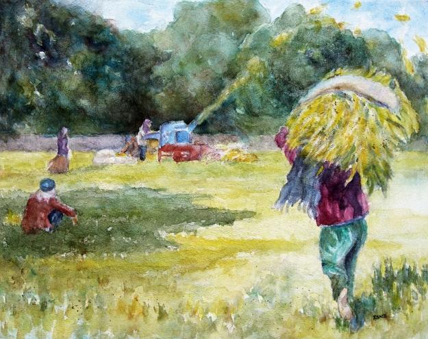 McLaren, EG, Agoo Harvest, 16x20, wc on canvas sf